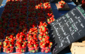 Susan Loomis - Market trawberries
