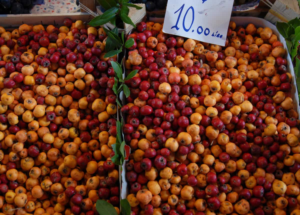 """Hünnap"" is a fruit that is used in Ottoman Palace cuisine, originally from Syria. It's season is from the end of September. After October you can still find dried hünnap. Hünnap is used in Turkish cuisine as a snack; we eat it with tea especially after dinner. Fresh Hünnap can also be used to make jam."