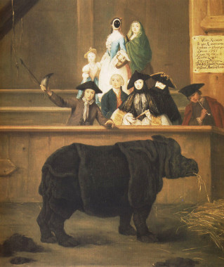 Pietro Longhi, Clara the Rhinoceros, 1751