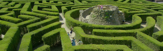 Maze at Leeds Castle, Kent—Medieval Sites around London
