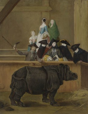 Pietro Longhi, The Exhibition of a Rhinoceros at Venice, 1751 National Gallery, Room 39
