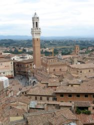 View of Siena, with the Torre del Mangia - site of the Palio in Siena