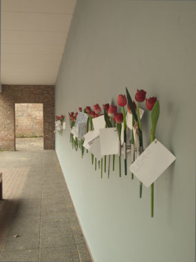 Tulips on the wall of the Holocaust memorial, Amsterdam; photo by Juliane H.