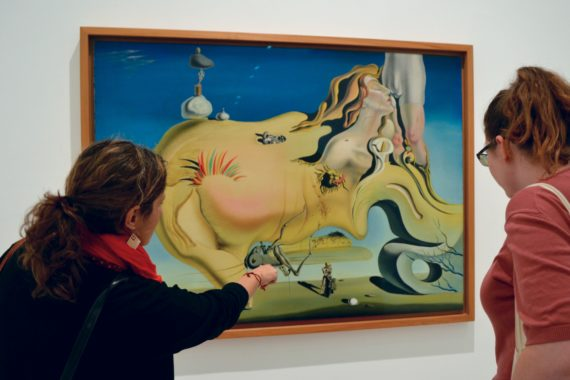 Context docent Diana explains the intricacies of Dalí's Face of the Great Masturbator